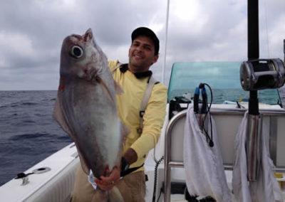 pescaria_lirio_web3